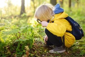 Forårsaktiviteter som børnene elsker